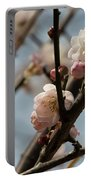 Peach Blossoms In Spring Portable Battery Charger