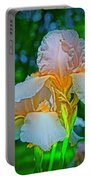 Peach Curtsey Portable Battery Charger