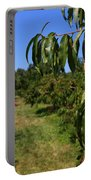 Peach Grove Portable Battery Charger