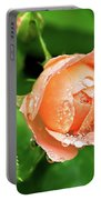 Peach Rose In The Rain Portable Battery Charger