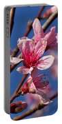 Peach Tree Blossoms Portable Battery Charger