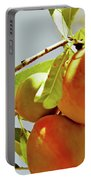Peaches On The Tree Portable Battery Charger