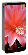 Peachy Pink Cactus Orchid Portable Battery Charger