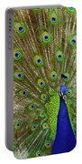 Peacock 1 Portable Battery Charger