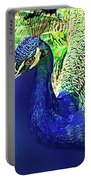 Peacock Blued Portable Battery Charger