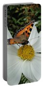 Peacock Butterfly On Cosmos Portable Battery Charger