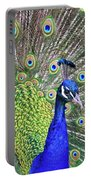 Peacock Colors Portable Battery Charger