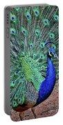 Peacock In A Oak Glen Autumn 2 Portable Battery Charger