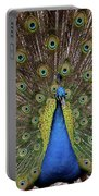 Peacock Plumage Portable Battery Charger