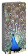 Peacock Show Portable Battery Charger