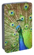 Peacock Showing Off Portable Battery Charger