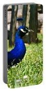 Peafowl Eye To Eye Portable Battery Charger