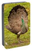 A Peahen's Plumage Portable Battery Charger
