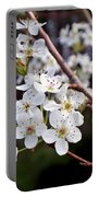 Pear Tree Blossoms IIi Portable Battery Charger