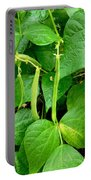 Peas Growing On The Farm 1 Portable Battery Charger