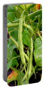 Peas Growing On The Farm 4 Portable Battery Charger