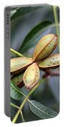 Pecan Cluster Portable Battery Charger