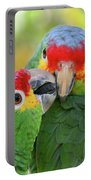 Pecking Order Portable Battery Charger