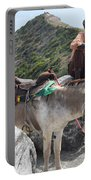 Peddler Of The Mountains Portable Battery Charger