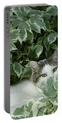 Peek A Boo Kitty Portable Battery Charger