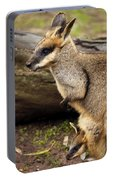 Peeking At The World Portable Battery Charger