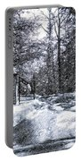 Peeling Winter Away Portable Battery Charger