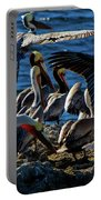 Pelican Fiesta Portable Battery Charger
