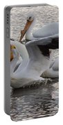Pelican Having Supper Portable Battery Charger