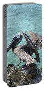 Pelican In Aruba Landing On Lava Rock Portable Battery Charger