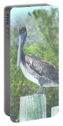 Pelican On Post Portable Battery Charger