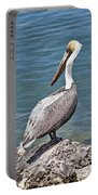 Pelican On Rock Portable Battery Charger