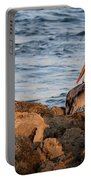 Pelican On The Rocks Portable Battery Charger