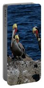 Pelicanos Portable Battery Charger