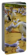 Pelicans At Pearl Beach 3.1 Portable Battery Charger