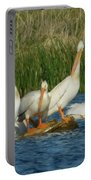 Pelicans Being Pelicans Portable Battery Charger
