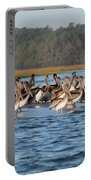 Pelicans, Murrells Inlet Sc Portable Battery Charger