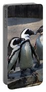 Penguin Embracing Portable Battery Charger