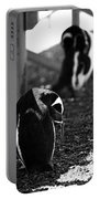 Penguins Under The Boardwalk Portable Battery Charger