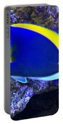 Blue Tang Fish  Portable Battery Charger