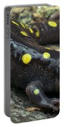 Pennsylvania Spotted Salamander Portable Battery Charger