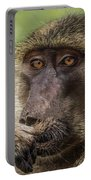 Pensive Baboon Portable Battery Charger