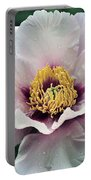 Peony 21 Portable Battery Charger