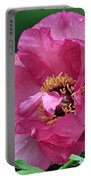 Peony 30 Portable Battery Charger