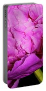 Peony Iv Portable Battery Charger