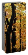 Pequaming Fall Portable Battery Charger