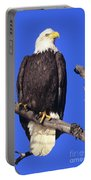 Perched Bald Eagle Portable Battery Charger