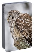 Perched Barred Owl Portable Battery Charger