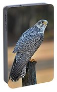 Peregrine Falcon Perched Portable Battery Charger