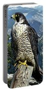 Peregrine Falcon, Yosemite Valley, Western Sierra Nevada Mountain, Echo Ridge Portable Battery Charger