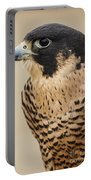 Peregrine Portable Battery Charger